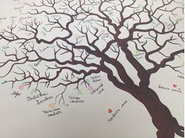 Picture of Wedding tree