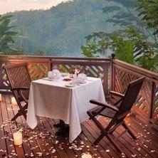 Picture of Kupu Kupu Barong Villas & Mango Tree Spa-Bali